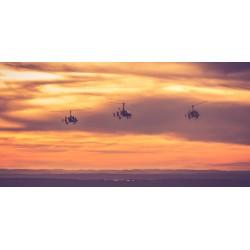 Gyro im Sonnenuntergang